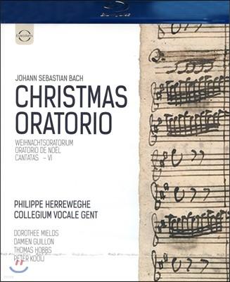 Philippe Herreweghe 바흐: 크리스마스 오라토리오 (Bach: Christmas Oratorio, BWV248) Blu-ray