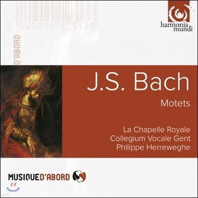 Philippe Herreweghe 바흐: 6개의 모테트 BWV 225-230 - 헤레베헤 (J.S. Bach: Motets BWV 225-230)
