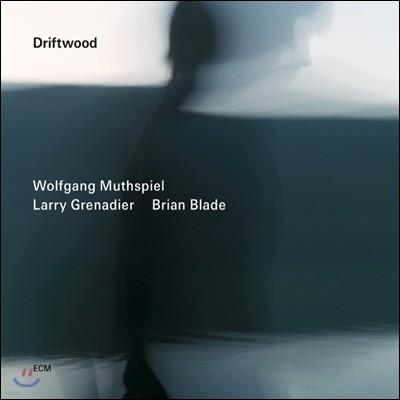 Wolfgang Muthspiel, Larry Grenadier, Brian Blade - Driftwood