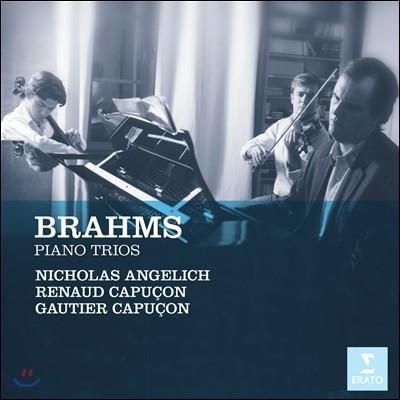 Renaud & Gautier Capucon 브람스: 피아노 삼중주 1-3번 (Brahms : Trios For Violin, Cello & Piano)
