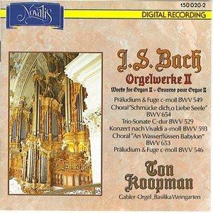 Ton Koopman / Bach: Organ Works, Vol. II (수입/1500202)