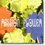 T-Square - Passion Flower