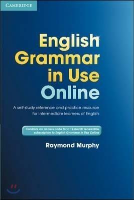 English Grammar in Use Online