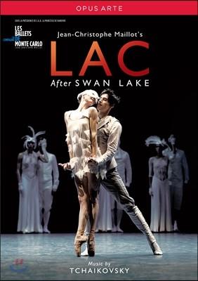 Les Ballets de Monte Carlo 장-크리스토프 마이요의 발레 `호수` (Tchaikovsky: LAC - after Swan Lake)