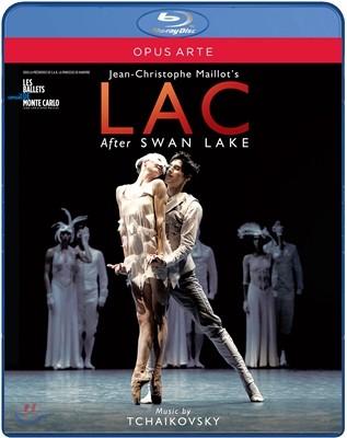 Les Ballets de Monte Carlo 장-크리스토프 마이요의 발레 `호수` (Tchaikovsky: LAC - after Swan Lake) 블루레이