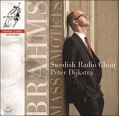 Swedish Radio Choir 브람스: 미사와 모테트 작품집 (Brahms: Mass & Motets)