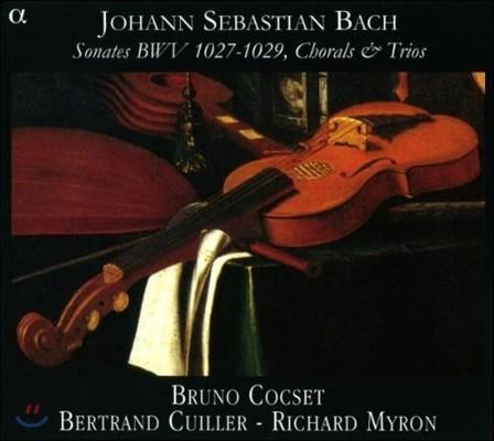 Bruno Cocset 바흐: 비올라 다 감바 소나타, 합창과 삼중주 (Bach: Sonates BWV1027-1029, Chorals & Trios)