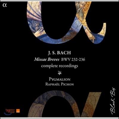 Pygmalion 바흐: 미사 브레비스 전집 (Bach: Missae Breves Complete Recordings BWV232-236)