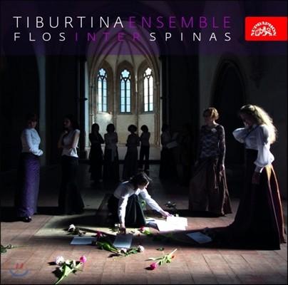 Tiburtina Ensemble 가시 사이에 피어난 꽃 (Flos Inter Spinas Blossoms Among The Thorns)