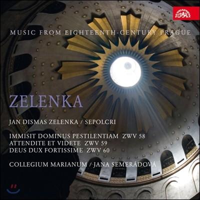 Jana Semeradova 젤렌카: 세폴크로-성주간을 위한 칸타타 (Zelenka: Sepolcri)