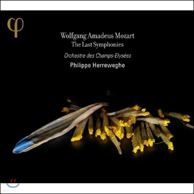 Philippe Herreweghe 모차르트: 후기 교향곡 (Mozart: The Last Symphonies Nos. 39-41)