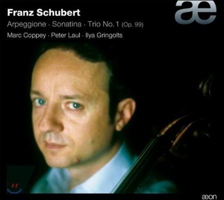Marc Coppey 슈베르트 : 아르페지오네 소나타, 소나티나, 피아노 삼중주 (Schubert: Arpeggione Sonata, Sonatina No.1, Piano Trio No.1)