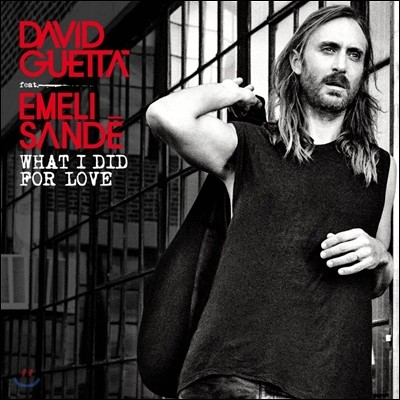 David Guetta - What I Did For Love (Feat. Emeli Sande) (Remixes EP)