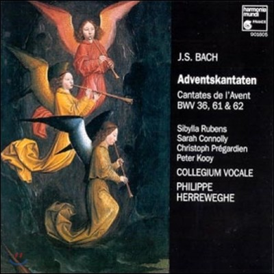 Philippe Herreweghe 바흐: 강림절 칸타타 (Bach: Advent Cantatas BWV36, 61, 62)