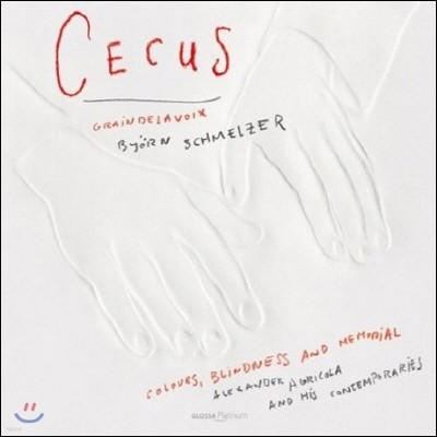 Bjorn Schmelzer 색, 장님 그리고 기억 (Cecus - Colours, Blindness And Memorial)