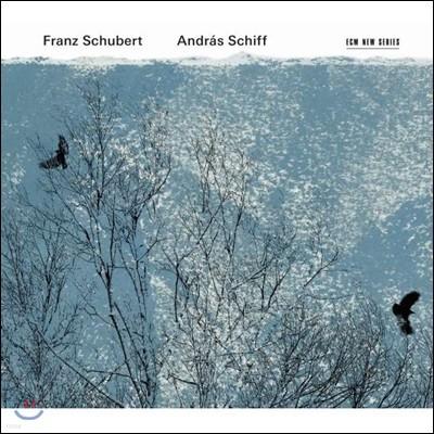 Andras Schiff 슈베르트: 피아노 소나타, 악흥의 순간, 즉흥곡, 헝가리 멜로디 (Schubert: Piano Sonatas, Moments Musicaux, Ungarischen Melodie)
