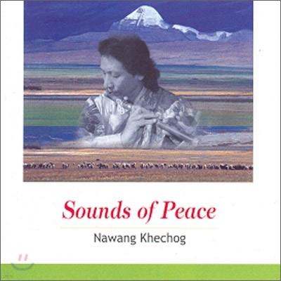 Nawang Khechog (나왕 케촉) - Sounds of Peace