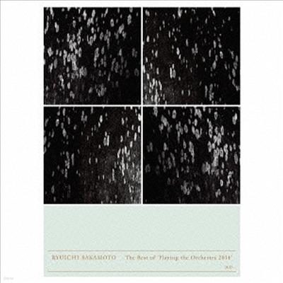 류이치 사카모토 - 오케스트라 2014 (Ryuichi Sakamoto - Playing The Orchestra 2014) (2CD)(일본반) - Ryuichi Sakamoto