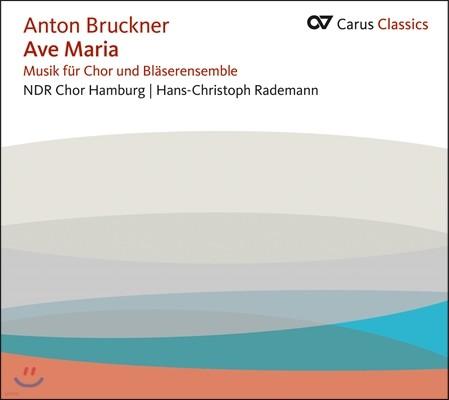 NDR Chor Hamburg 브루크너: 합창과 관악 앙상블을 위한 음악 (Bruckner: Ave Maria - Music for Choir and Wind Ensemble)