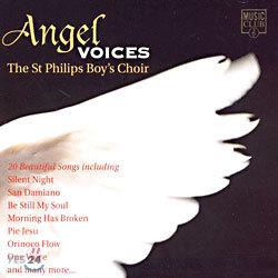 천사의 목소리 - 세인트 필립스 소년 합창단