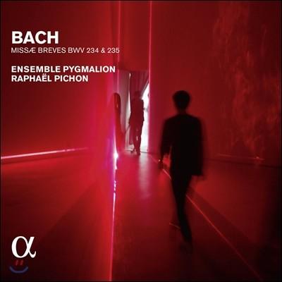 Pygmalion 바흐: 미사 브레비스 (Bach: Missae Breves BWV234, 235)