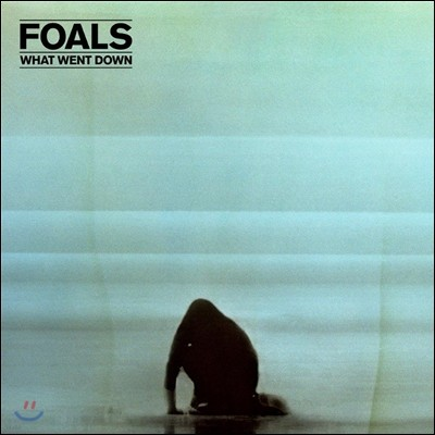 Foals - What Went Down (Deluxe Edition)