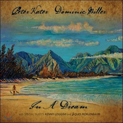 Peter Kater / Dominic Miller - In A Dream 피터 케이터 도미니크 밀러