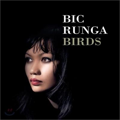 Bic Runga - Birds