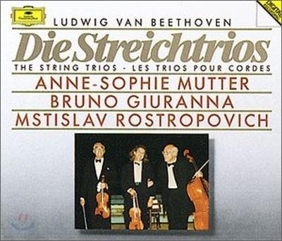 Beethoven : The String Trio : MutterㆍGiurannaㆍRostropovich