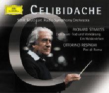 R. Strauss : Don JuanㆍEin Heldenleben / Respighi : Pini Di Roma : Sergiu Celibidache
