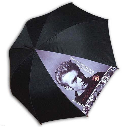 [ART] Hello RainCats 제임스딘 자동 우산