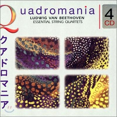 Beethoven : Essential String Quartets