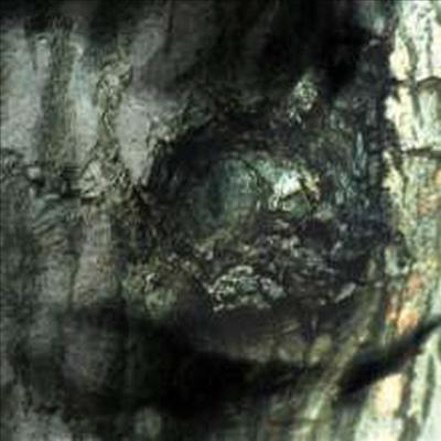 Yann Tiersen - La Valse Des Monstres (Remastered)(Gatefold)(Vinyl LP)