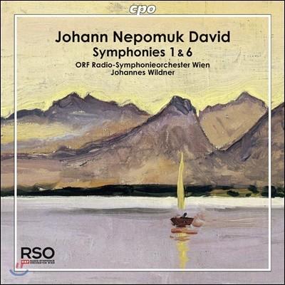 Johannes Wildner 요한 네포무크 다비트: 교향곡 1, 6번 (Johann Nepomuk David: Symphonies No.1, No.6)