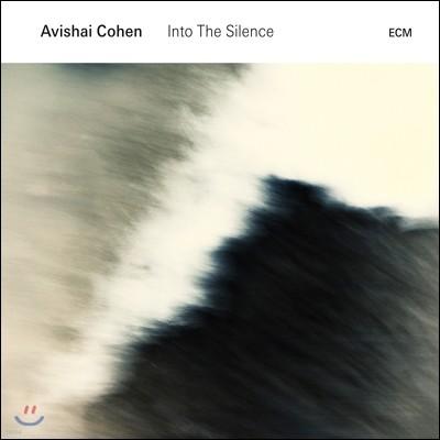 Avishai Cohen (아비샤이 코헨) - Into The Silence