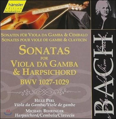 Hille Perl 바흐: 비올라 다 감바와 하프시코드를 위한 소나타 (Bach: Sonatas for Viola da Gamba & Harpsichord BWV1027-1029)