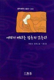 여자의 바다는 잠들지 않는다 2 (문학세계 소설선 244)