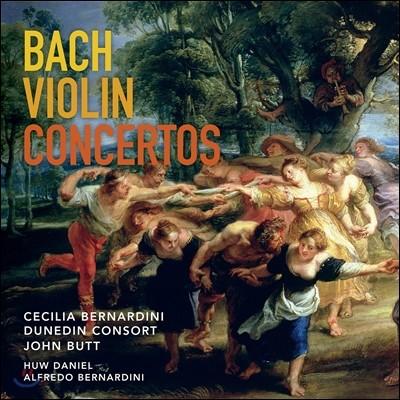John Butt / Cecilia Bernardini 바흐: 바이올린 협주곡 BWV1042, 1041 & 1043 - 존 버트, 세실리아 베르나르디니 (Bach: Violin Concertos)