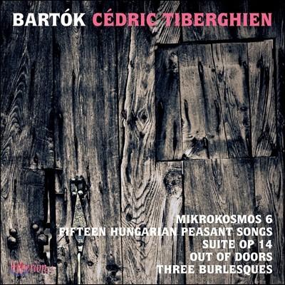 Cedric Tiberghien 바르톡: 미크로코스모스 6권, 15개의 헝가리 농민가 - 세드릭 티베르기엥 (Bela Bartok: Mikrokosmos, Hungarian Peasant Songs)