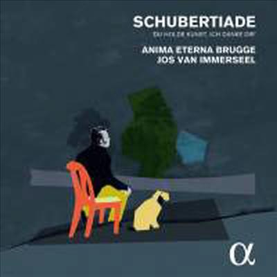 슈베르트: 실내악 및 가곡 선집 (Schubertiade - Schubert: Chamber Works) (4CD) - Jos van Immerseel
