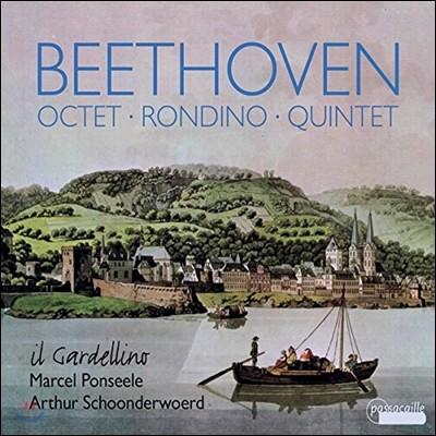 Il Gardellino 베토벤: 목관 5중주 Op.16, 8중주 Op.103, 론디노 WoO25 (Beethoven: Octet, Rondino, Quintet for Winds and Fortepiano) 일 가르델리노, 스혼데르부르트