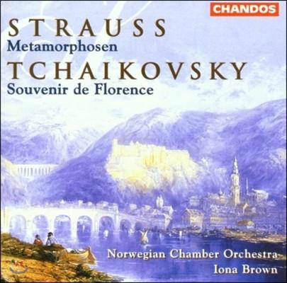 Iona Brown 슈트라우스: 메타모르포젠[변용] / 차이코프스키: 피렌체[플로렌스]의 추억 (Richard Strauss: Metamorphosen / Tchaikovsky: Souvenir de Florence)