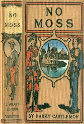 No Moss; Or, The Career of a Rolling Stone