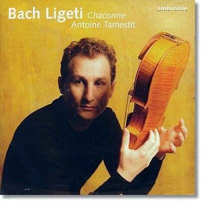 바흐 & 리게티 : 샤콘느 (비올라 편곡)
