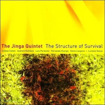 The Jinga Quintet & Avishai Cohen - The Structure of Survival