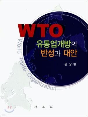WTO 유통업개방의 반성과 대안