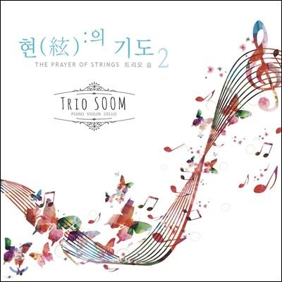 지병찬 신부 / 트리오 숨 (Trio Soom) - 현의 기도 2 (The Prayer of Strings)