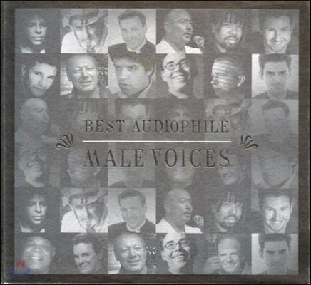 베스트 오디오파일 남성 보이시스 (Best Audiophile Male Voices)