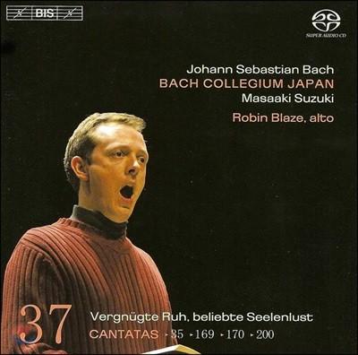 Robin Blaze 바흐: 칸타타 37집 (Bach: Cantatas Vol. 37)