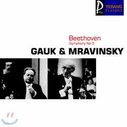 Beethoven : Symphony No.5 : GaukㆍMravinsky